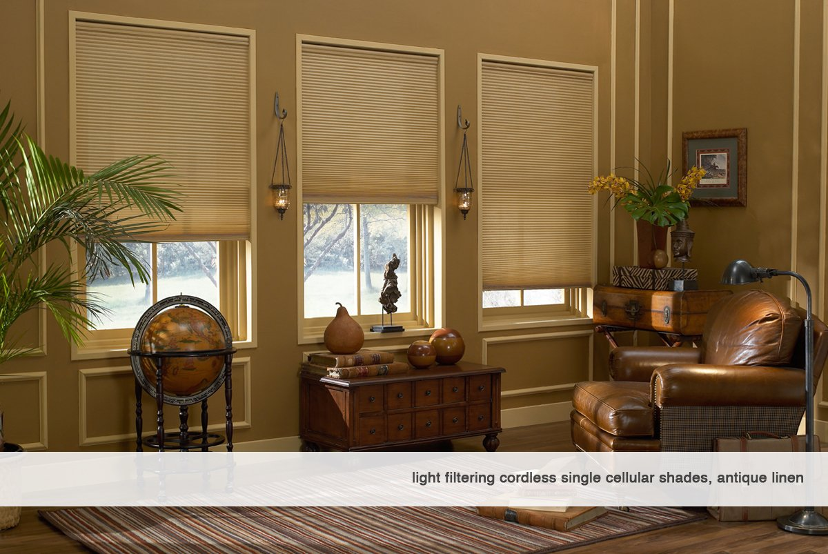 Windowsandgarden Custom Cordless Single Cell Shades, 58W x 47H, Espresso, Any Size 21-72 Wide and 24-72 High by Windowsandgarden