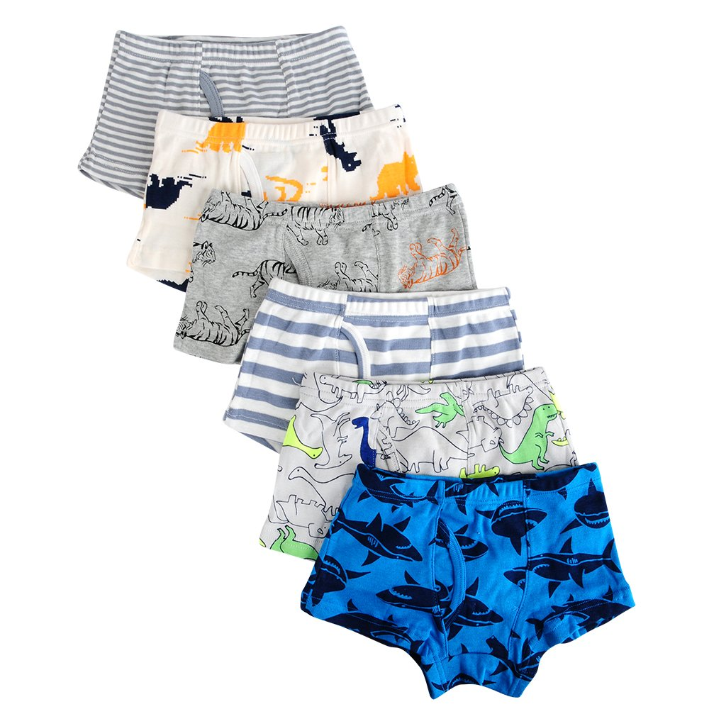 Closecret Kids Series Soft Cotton Toddler Underwear Little Boys' Assorted Boxer Briefs(Pack of 6) (Style 1, 2-3 Years)