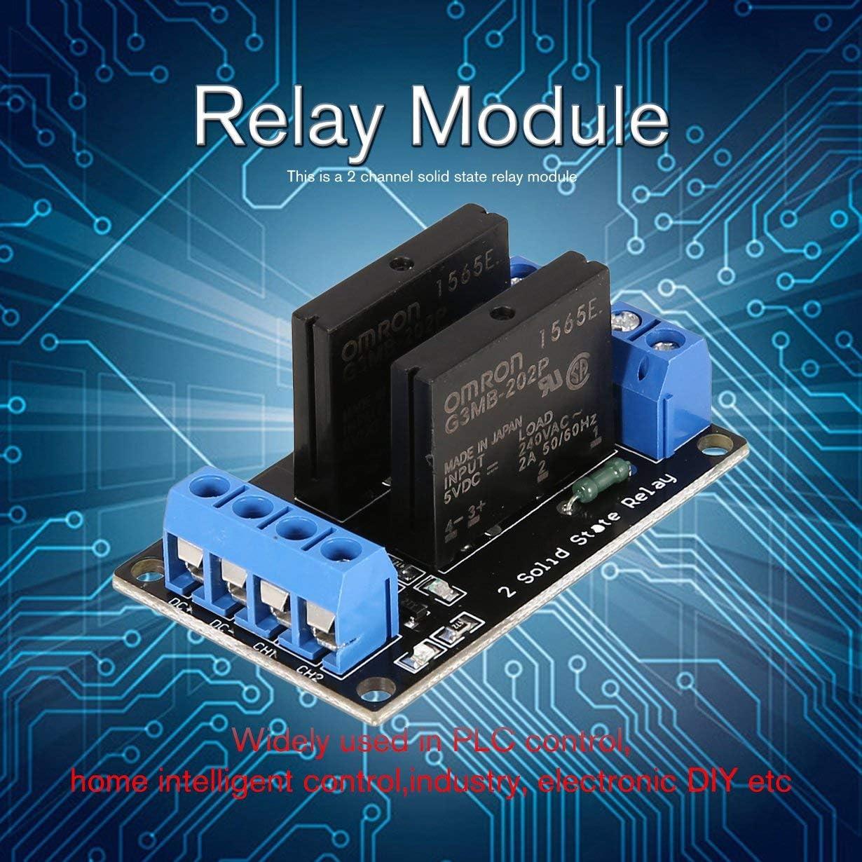 Blau /& Schwarz 2 Kanal Solid State Relay Modulplatine Low Level Trigger SSR Eingang 5V DC Ausgang 240V AC 2A Sicherung PLC Controller