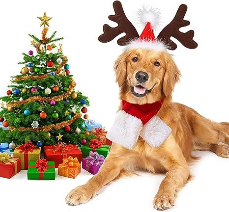 Legendog - Disfraz de Navidad para Perro, Ajustable para la Cabeza ...