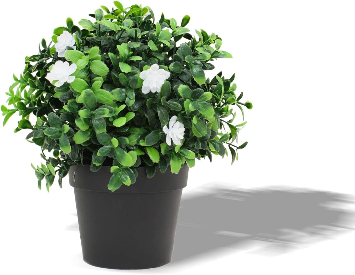 FLORALEAF Artificial Plants Small Fake Plant Green Topiaries Potted Décor Plastic Flowers Plant for Home Office Farmhouse Bathroom Tabletop Indoor Décor English Boxwood Flower, 1 Pack