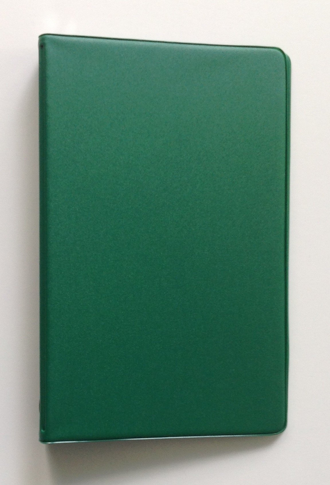 Mead 46001 Small 6-Ring Green Vinyl Loose-Leaf Memo Notebook with 6-3/4 x 3-3/4-inch Lined Paper (40 Sheets)
