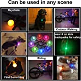 AMNQUERXUS Pet Dog Cat Collar LED Lights, Clip on