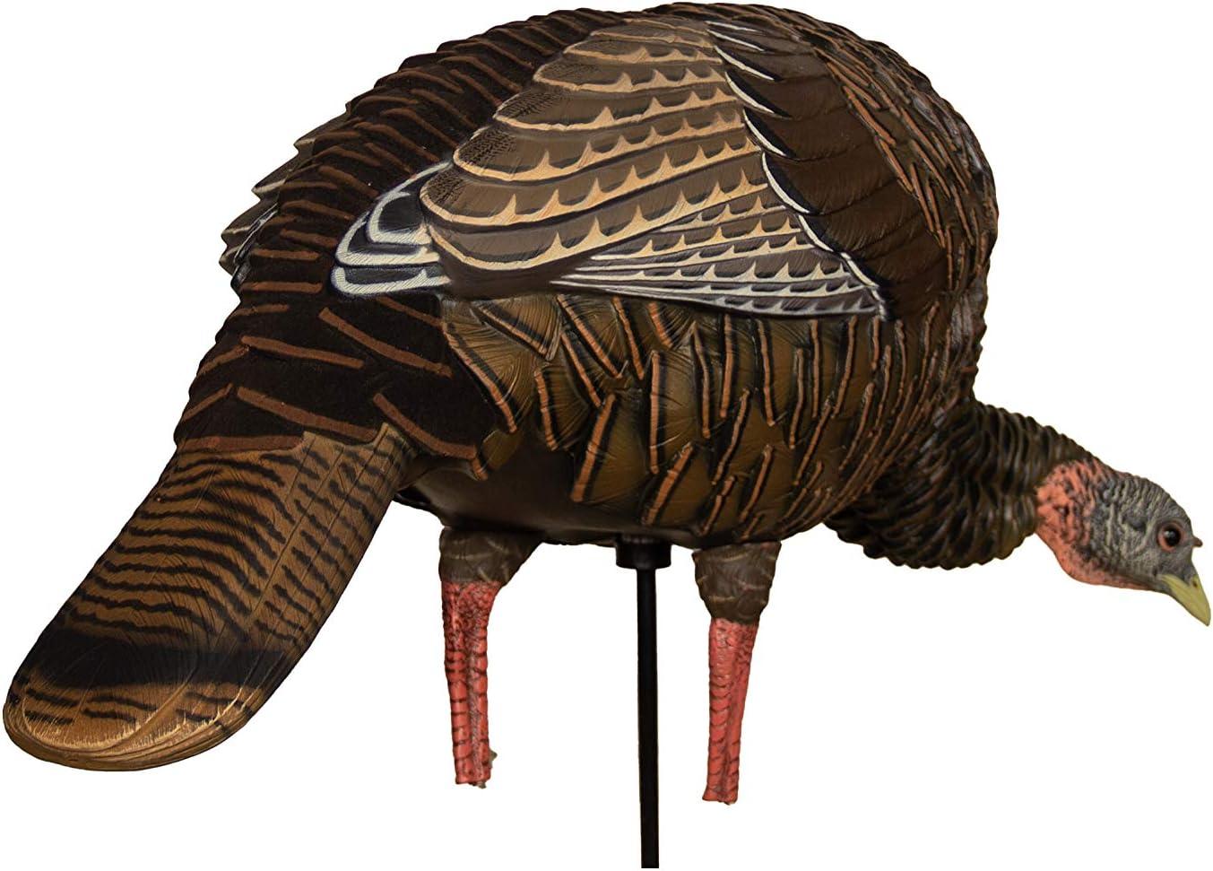Multi Avian-X HDR Feeding Hen Turkey Decoy