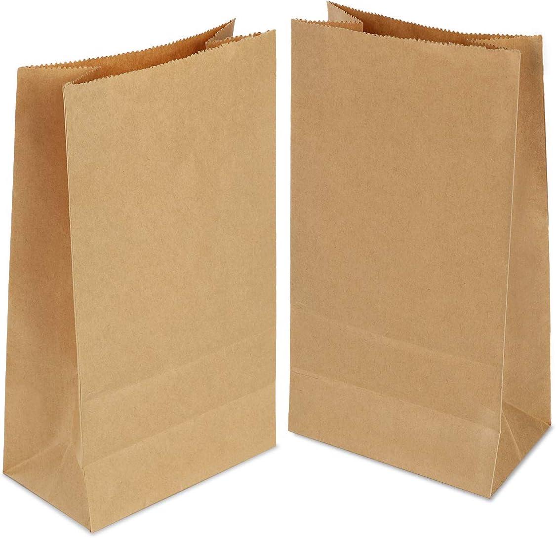 100 piezas Bolsas de Papel Regalo 24x14x8 cm - Bolsa Biodegradable Regalos Comunión para Invitados o para Guardar Comida, Semillas Flores, Dulces, Chuches, Pan - Bolsitas Kraft Marrón