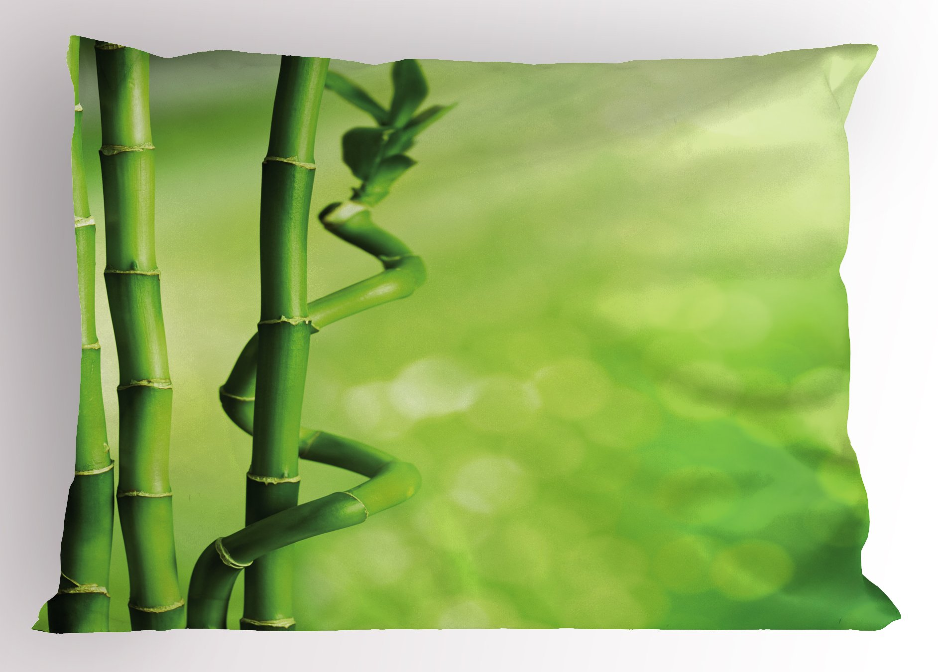 Ambesonne Green Pillow Sham, Bamboo Stems Nature Ecology Sunbeams Soft Spring Scenic Spa Health Relaxation, Decorative Standard Queen Size Printed Pillowcase, 30 X 20 inches, Green Light Green