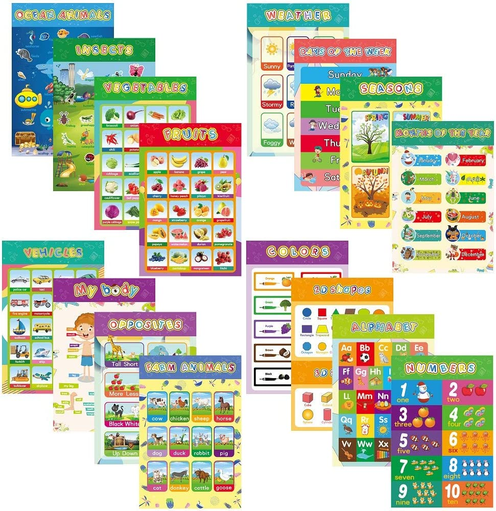 DCCPAA 16 Pieces Educational Preschool Posters for Classroom Decor, Homeschool for Kindergarten,Preschoolers,Toddlers Kids,Elementary Middle School Teach 16.5 x 11 Inch with Glue Point Dot (style 1)
