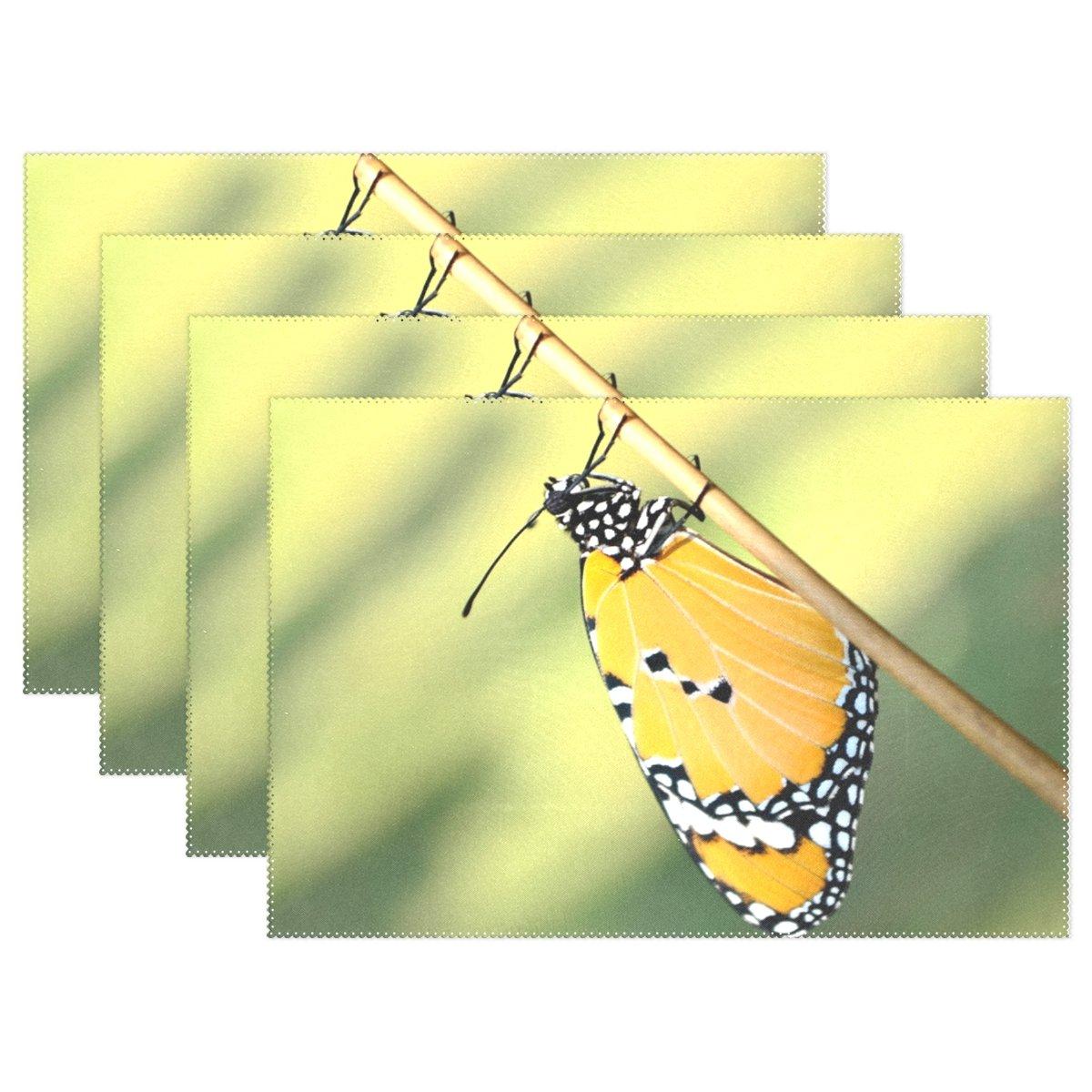 夕食テーブルマット – Heat Resistant手洗い可能プレースマットノンスリップ洗濯可能Placeマットキッチンダイニングルーム用1 Piece Wingパーティクル爆発 Placemats 001  Tiger Monarch Butterfly B078RP4D6V