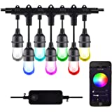 HBN Smart Outdoor Patio Lights RGB Color & White LED Lights Smart String Light-24ft, 12 Round Bulbs, 2.4 GHz Only, Works with
