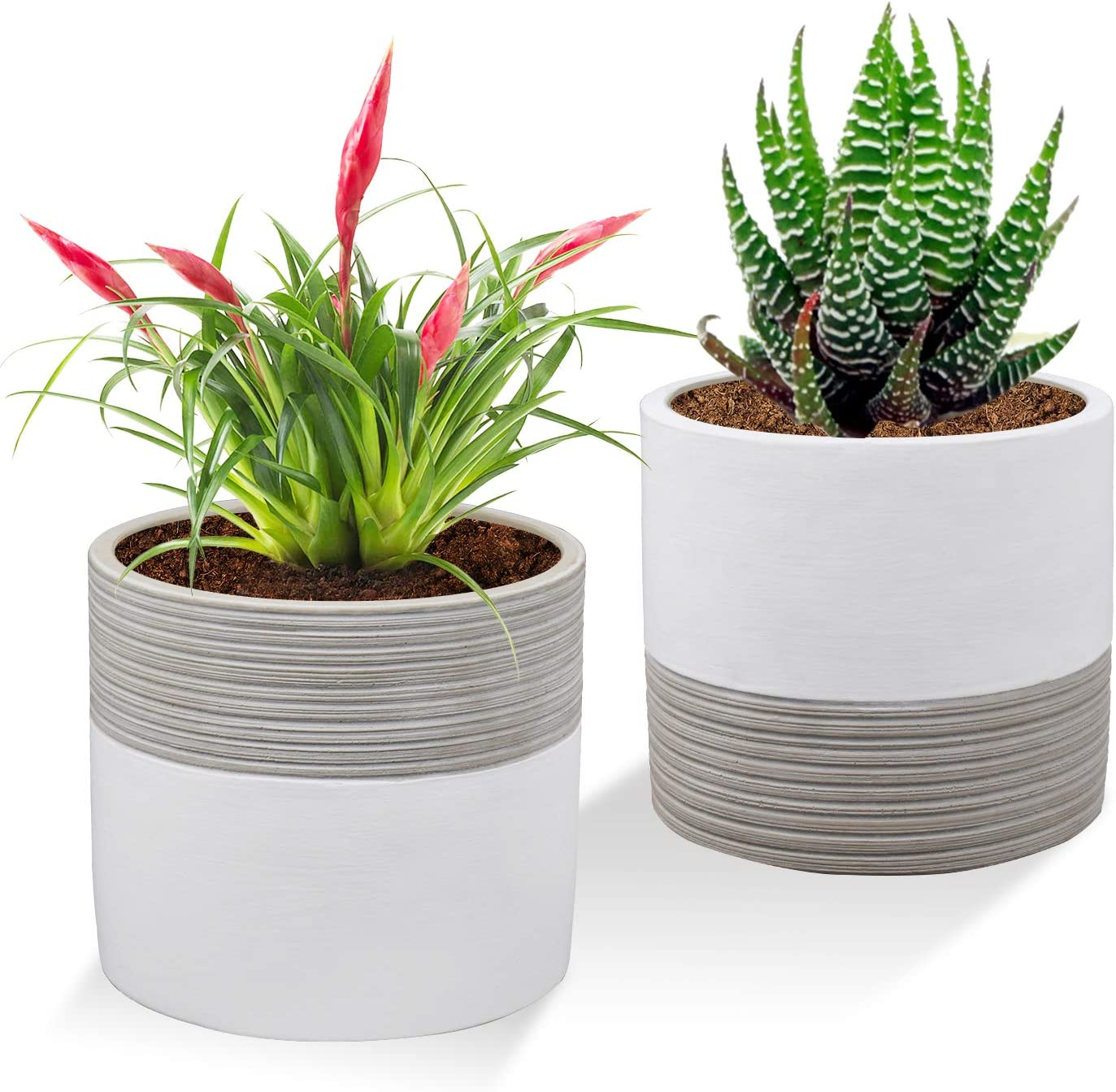 Brief Succulent Pots 5 Inch Diameter 2 Pack Modern Cement Cactus Flower Aloe Snake Plant Planter Container With Drainage Hole White P013 Kitchen Dining