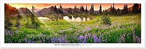 Vista Point Studio Gallery Award Winning Landscape Panoramic Art Print Poster: Mount Rainier National Park at Sunset