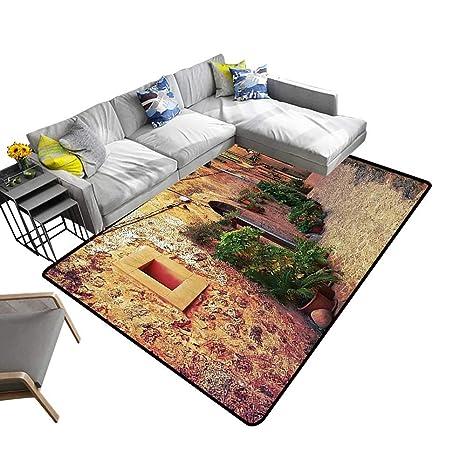 Amazon.com: alsohome Large Classical Carpet Ancient Strein ...