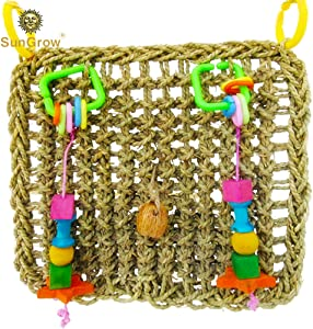 SunGrow Bird Foraging Wall Toy with Hanging Hook, 12.6x13.75 Inches, Edible Seagrass Woven Mat, Beak Exercise and IQ Simulation of Small and Medium Bird, Suitable for Wide Variety of Birds, 1 Piece