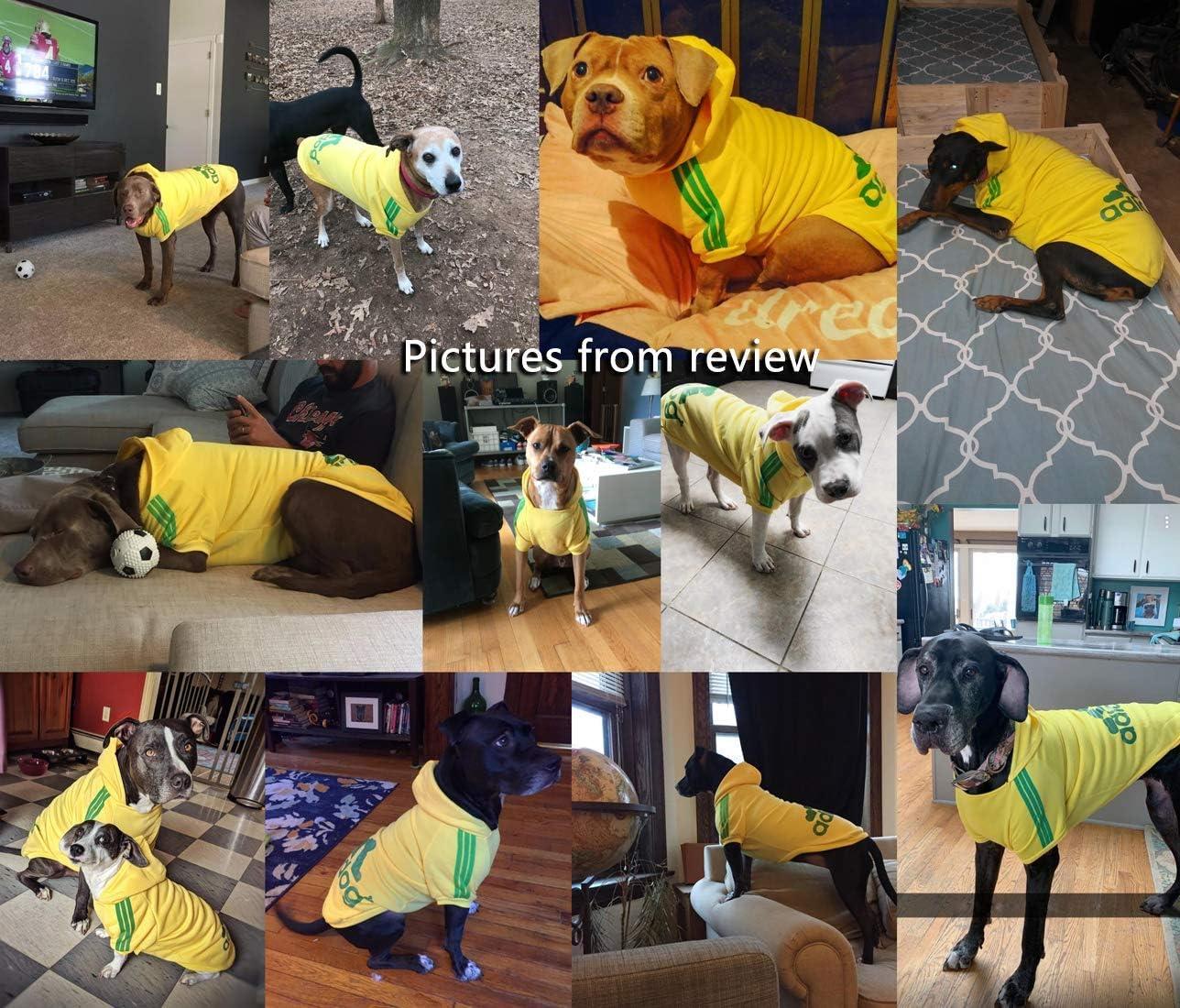 XS, Amarillo Disponibles de XS a 8XL Ducomi Adidog Se env/ía Desde Espa/ña Costuras Resistentes Sudadera con Capucha para Perros en Algod/ón Suave