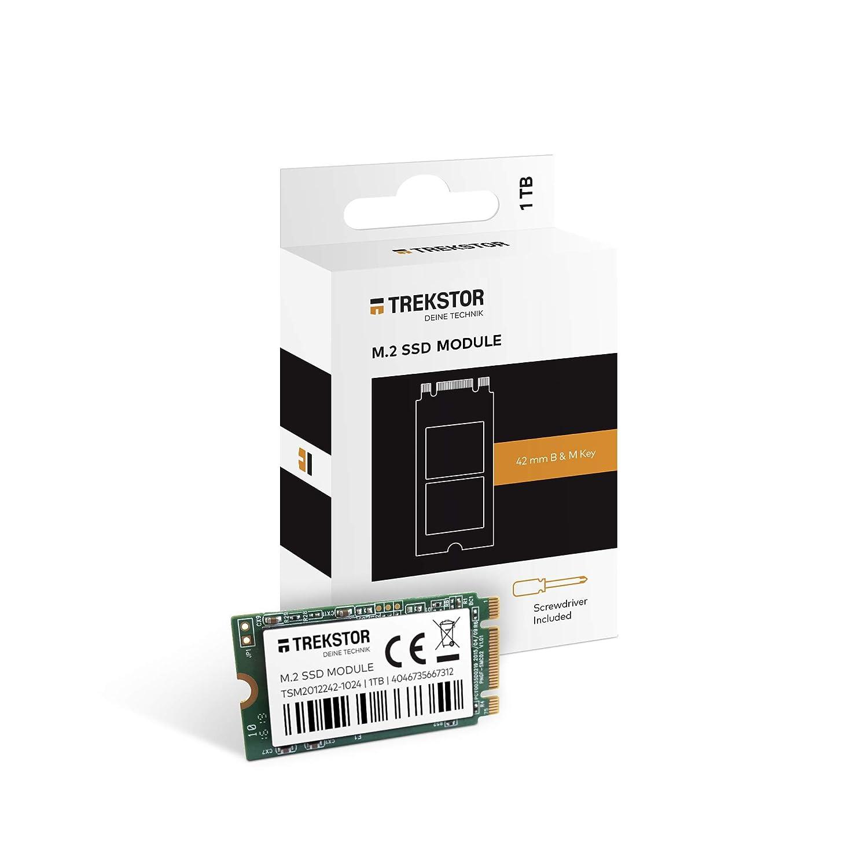 TrekStor SSD módulo Intern M2 1TB: Amazon.es: Electrónica