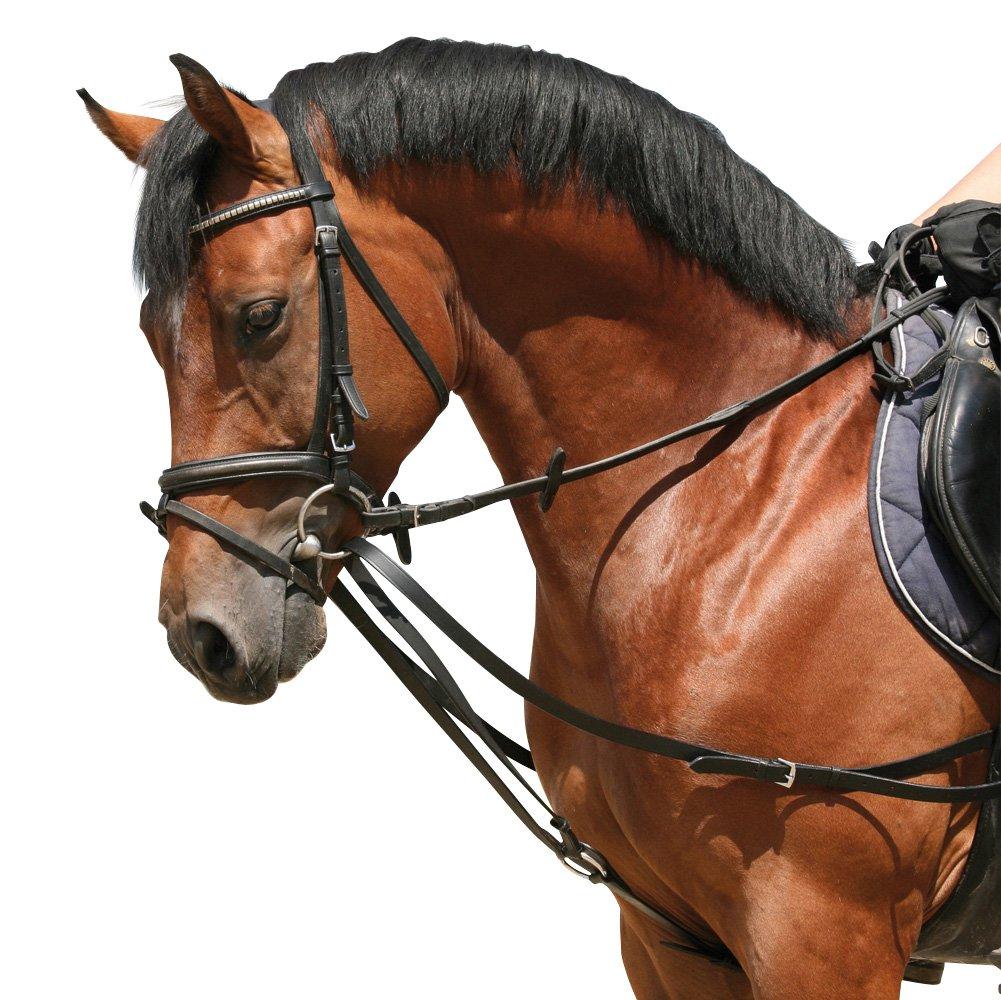 Black Warmbluet Full Black Warmbluet Full PFIFF Pony