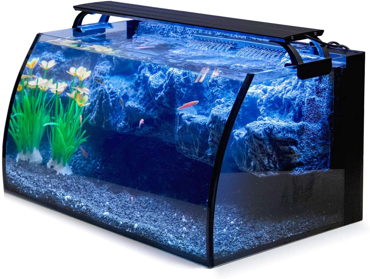 Hygger Horizon 8-Gallon Best Bow Front Aquarium Kit for Starters