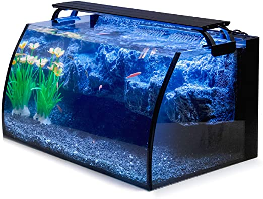 Amazon Com Hygger Horizon 8 Gallon Led Glass Aquarium Kit For Starters With 7w Power Filter Pump 18w Colored Led Light Wide View Curved Shape Fish Tank With Undetachable 3d Rockery Background