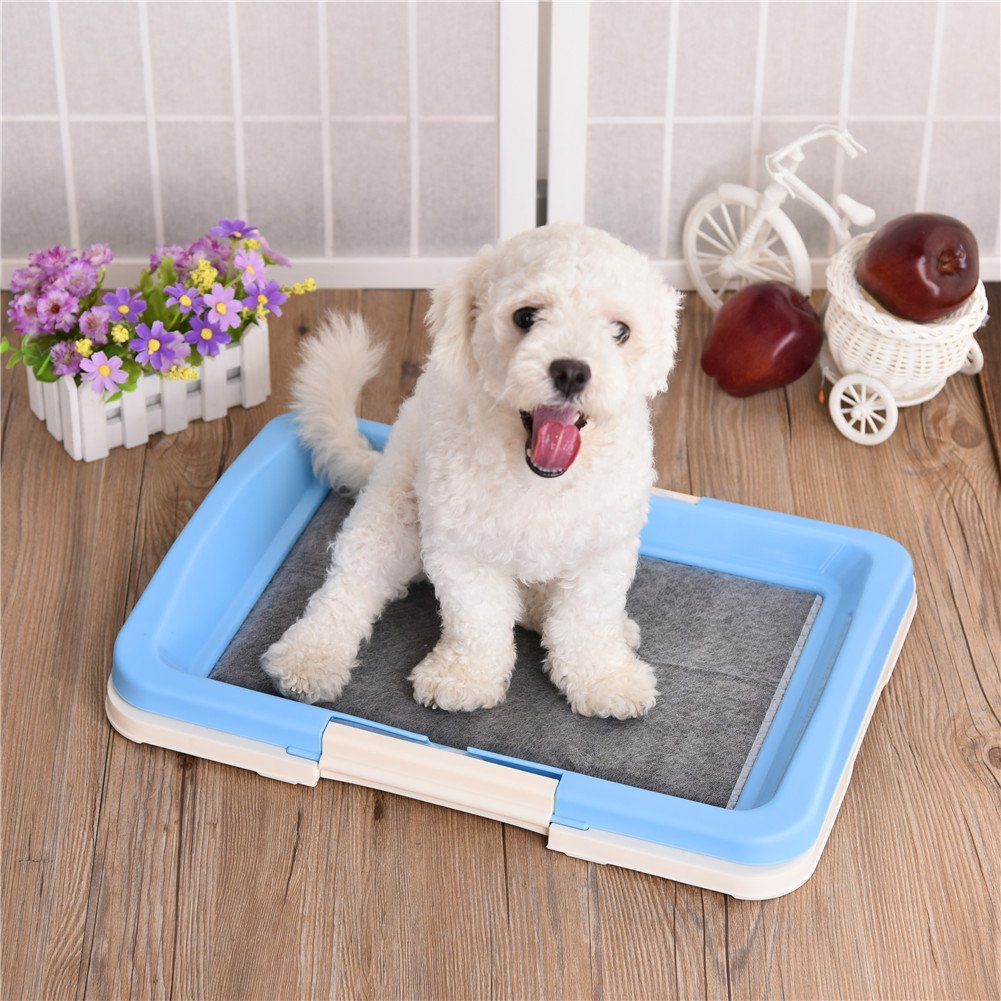 awtang Pet Training Toilet Small Sized Dog training Tray for Pets' Defecation Puppy Dog Potty Training Pad Blue by awtang (Image #3)