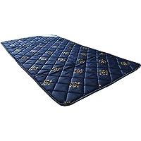 LivShine Nilkamal Travelite Multicolor Single Size One Inch Foam Mattress - 72X36, Yoga Mat