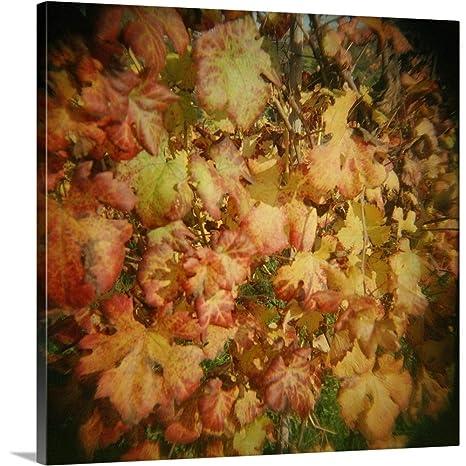 Amazon com: Premium Thick-Wrap Canvas Wall Art Print