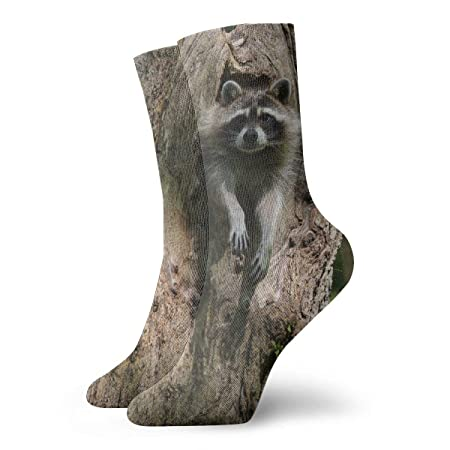 OUYouDeFangA Raccoon - Calcetines Cortos de algodón con ...