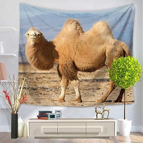 GKLKU Toalla de Camello Desierto Playa picn Tiro de Picnic Toalla Manta decoración del hogar,
