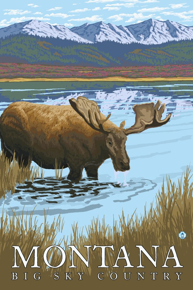 ムースDrinking at Lake – モンタナ 36 x 54 Giclee Print LANT-13765-36x54 B017E9VE3Q  36 x 54 Giclee Print