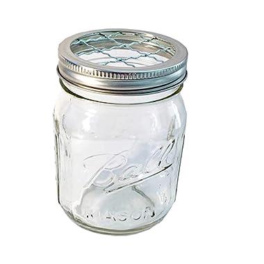 Mason Jar with Frog Lid Insert Regular Mouth 16 Oz Bundle (clear jar silver band)