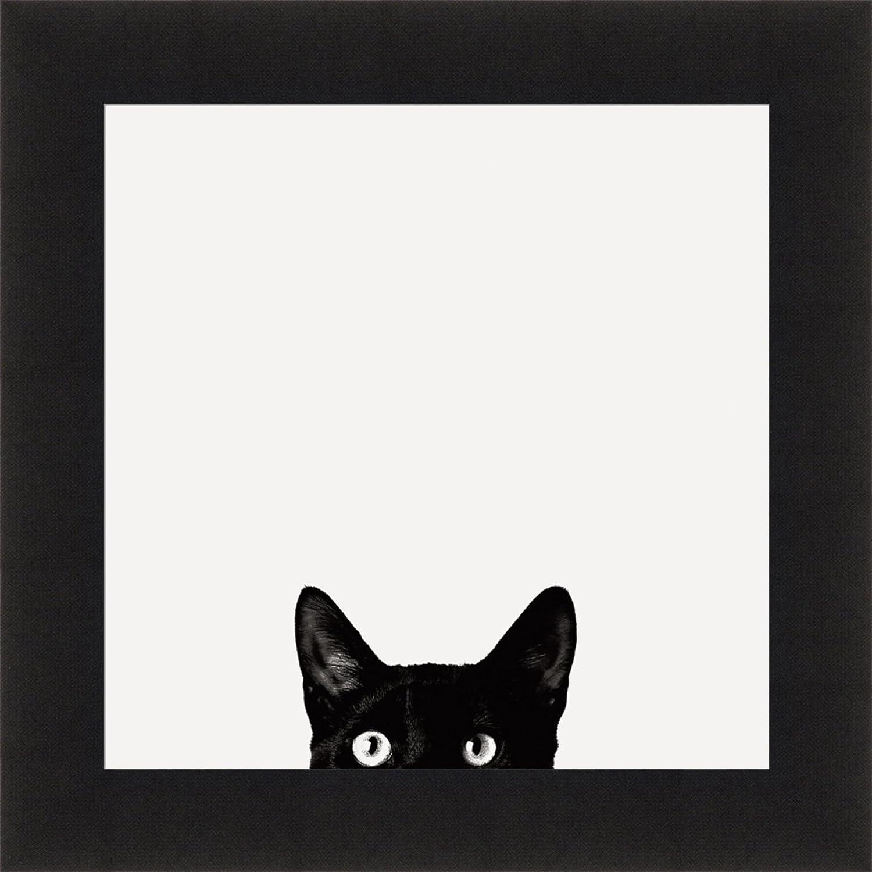 Home Cabin Décor Curiosity by Jon Bertelli 19x19 Black & White Cat Peeking Kitten Pet Framed Art Print Picture