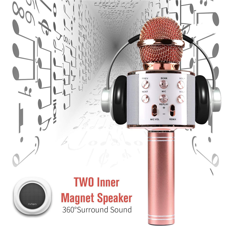Karaoke Microphone Wireless With Bluetooth Speaker