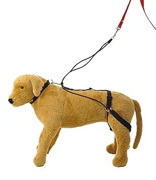 Hannadees Horgan Harness No Pull Back Leg Dog Harness, Large: Amazon