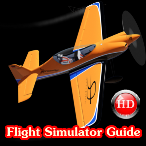 Flight Simulator Guide