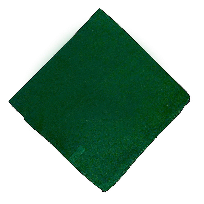 DAYDANA ホームアンドデコエディション ラグジュアリー コットン100% 22 x 22 布ナプキン - 6枚パック 22x22 inches グリーン  グリーン B07KCT2WT9