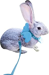 FunPetLife Adjustable Rabbit Harness and Leash Set