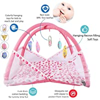 Baby Fly Baby Bedding Set with Play Gym and Mosquito Net Bed (0-6 Months) (Pink Cherry)