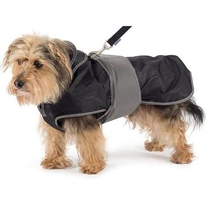 Ancol - Arnés 2 en 1 con abrigo para perros (Mediana (M)/