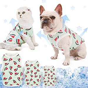 DogLemi Fast-Dry Instant Cooling Pet Shirts Cute Watermelon Puppy Dog Cat T-Shirt Tank Top Summer Clothes Cooling Ice Vest for Dogs