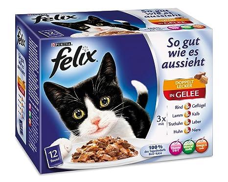Felix Tan Bueno como parece doble Sabroso Carne MIX12 X 100g gato Forro de Purina,