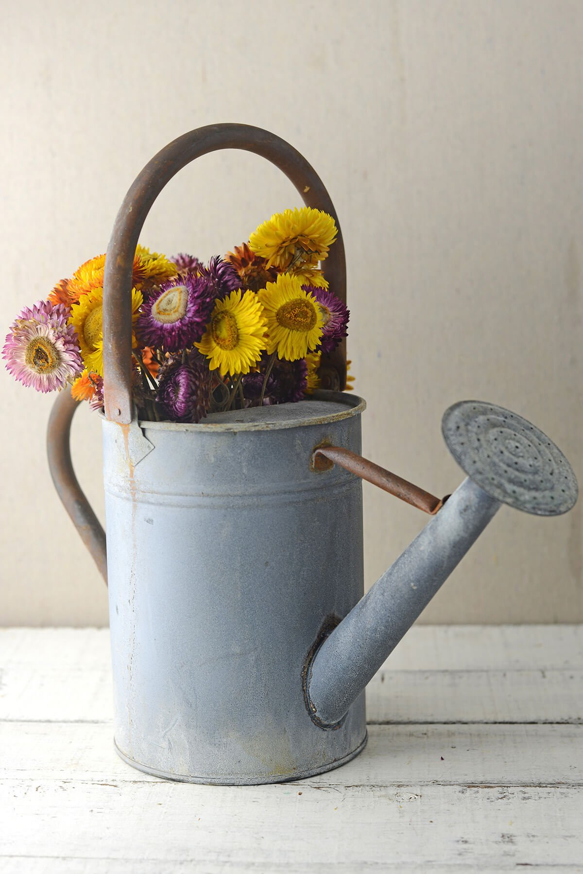 Dexon Power Rustic Zinc Watering Can With Large Handle