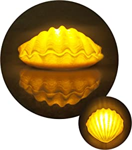Beach Theme Seashell Night Light - Battery Operated Warmwhite Shell Nightlight with Timer Perfect for Indoor, Kids Bedroom, Christmas Gift, Home Decor(5.39 x 4.84 x 2.36in)