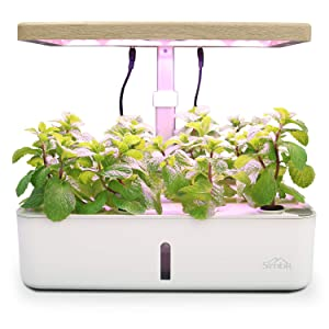 SIMBR Hydroponic Growing System Indoor Herb Garden Kit