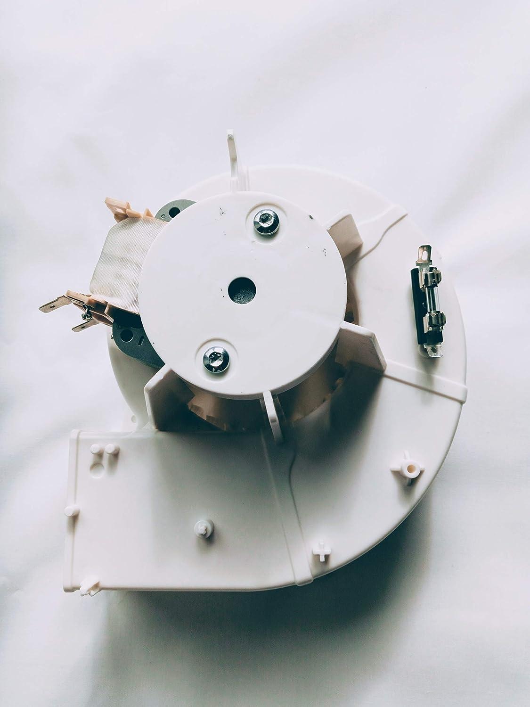 480120100527 ventilador de motor para microondas: Amazon.es ...