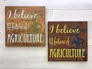 Wall Art I Believe in The Future of Agriculture Sign, FFA Decor, Painted, Farm Decor, FFA Advisor, FFA Gift, FFA Sign, Agriculture Decor Wood Plaque, Custom Gift
