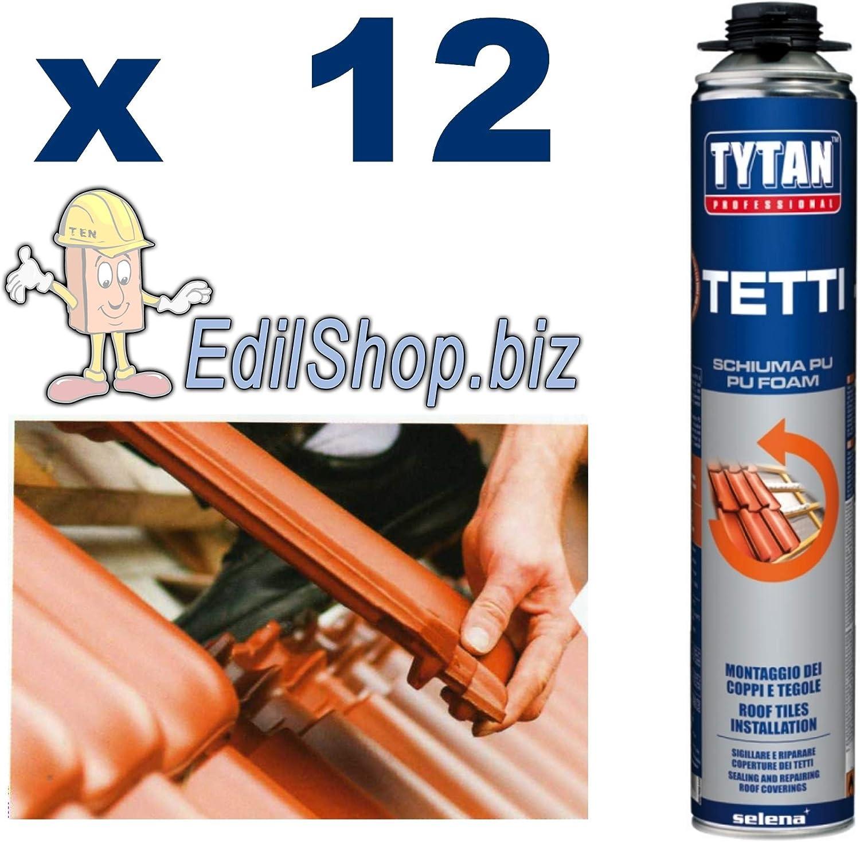Espuma Tejado para pistola Tytan profesional B3 – Casquillo para Poliuretano pistola 750 ml. X 12 PZI: Amazon.es: Bricolaje y herramientas
