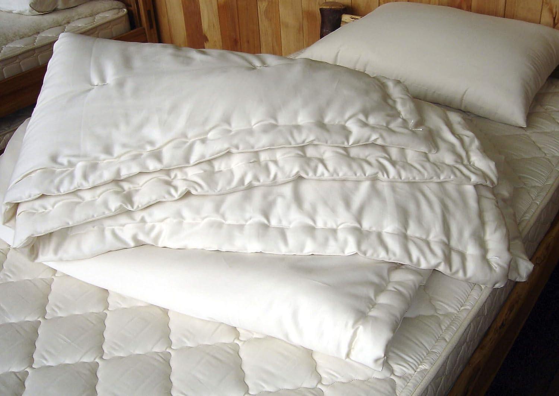 European 24 x24 Agoyal Euro Pillow Shams 24x24 Dark Gray Solid European Square Pillow Shams Set Of 2 Pc Pillowcase Euro Shams 24x24 Pillow Cover 500 Thread Count With 100/% Egyptian Cotton 2 Pack