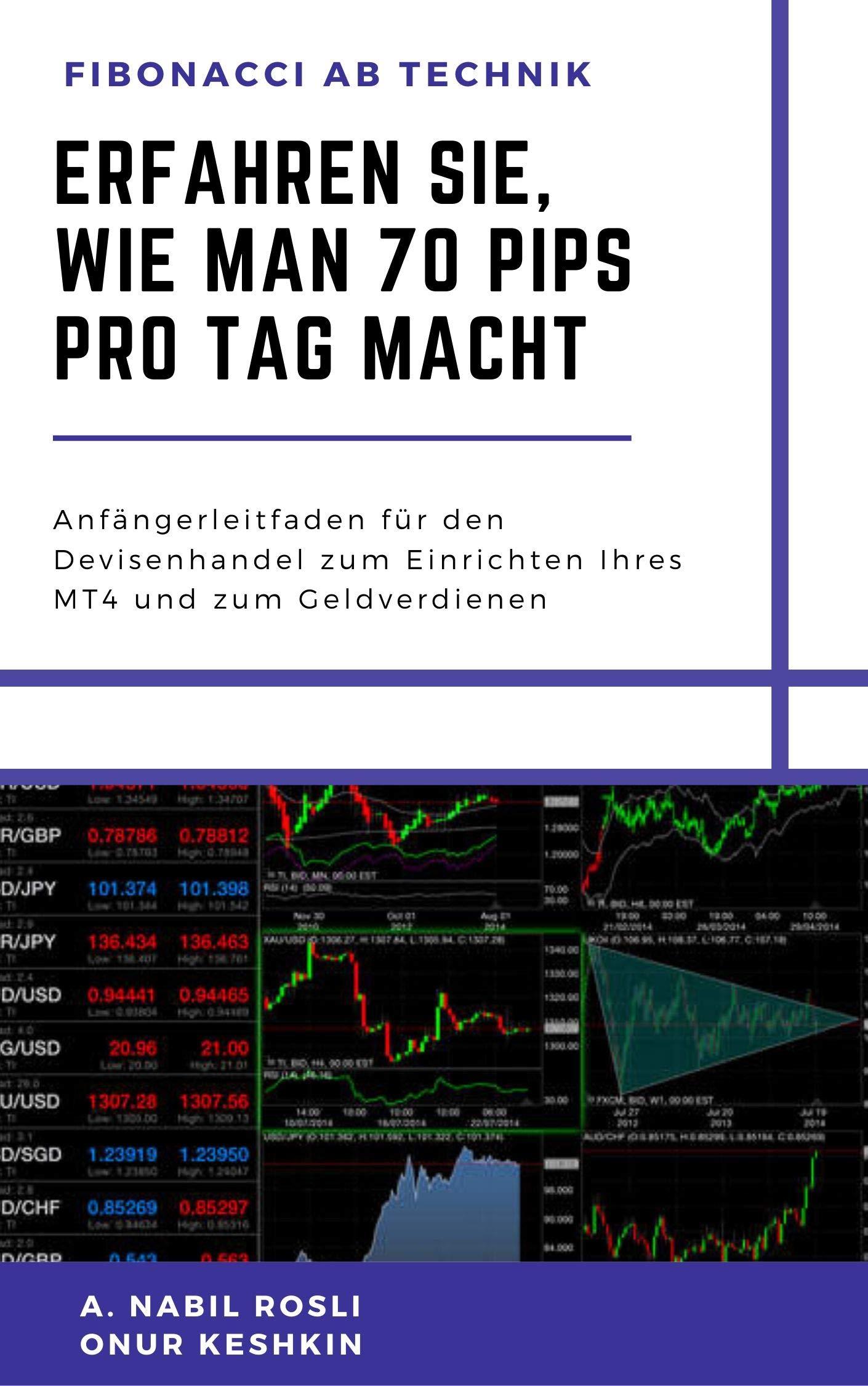 Erfahren Sie Wie Man 70 Pips Pro Tag Macht  Schritt Für Schritt Geld Verdienen Mit Fibonacci AB  NBL 7
