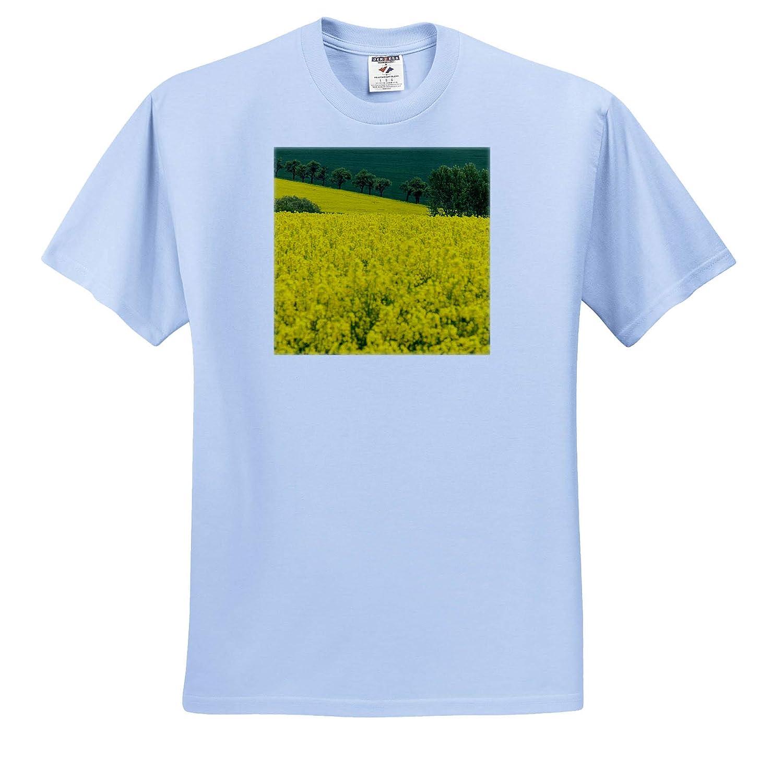 ts/_313076 - Adult T-Shirt XL 3dRose Danita Delimont Trees and canola Field Czech Republic Scenics