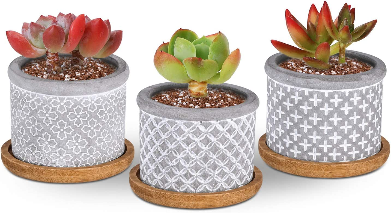 T4U 2.25 Inch Cement Grey Succulent Planter Pot with Drainage Tray, Concrete Succulent Mini Pot for Office Home Decoration, Set of 3