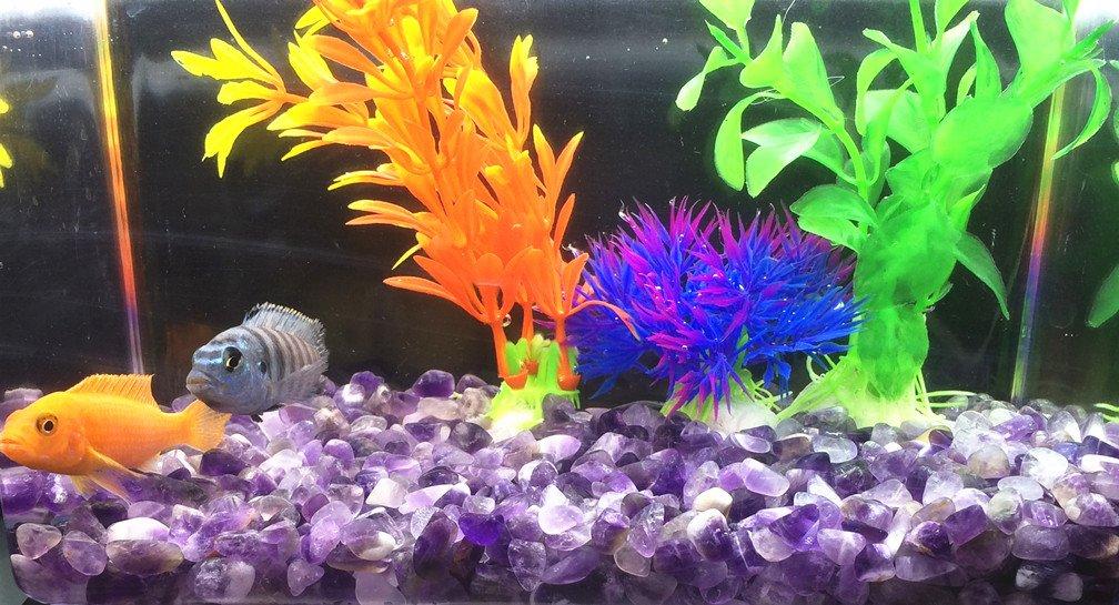 Plantas artificiales del acuario Planta de plástico del tanque de pescados para la decoración del acuario 14pcs (Grupo de color A): Amazon.es: Productos ...